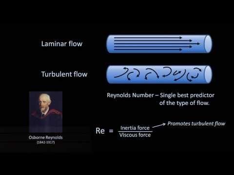 Reynolds Numbers and Turbulence (Fluid Mechanics - Lesson 11)