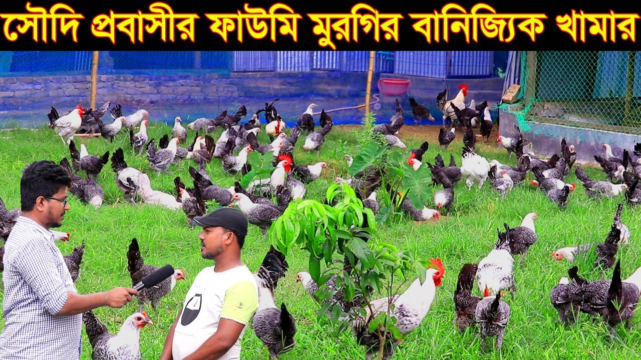 সৌদিআরব প্রবাসী গিয়াসউদ্দিন ফাউমি মুরগি পালন করে মাসে আয় করেন লাখ টাকা fawmi murgi palon