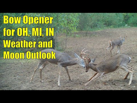 Bow Season Opening Day Conditions For OH, MI, IN 2020