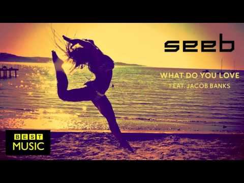 Seeb - What Do You Love (feat Jacob Banks)