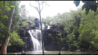 Cedar Creek Falls 호주가족여행 필수코스 …