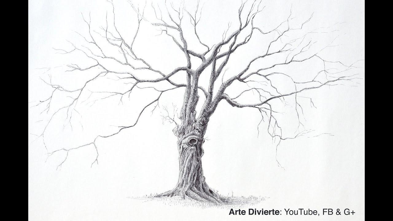 Cómo dibujar un árbol con bolígrafo (Un árbol grande y