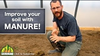 Improving Soil with Manure