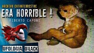 👽 LA EXTRAÑA COSA QUE SE APARECIÓ EN ITALIA @OxlackCastro