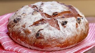 Cinnamon Raisin Bread (easy, No-knead Recipe) - Gemma's Bigger Bolder Baking Ep 91