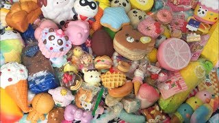 UPDATED SQUISHY COLLECTION!