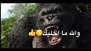 شيلات فزعه (غوريلا ينقذ بنت من الديناصور!!)#1