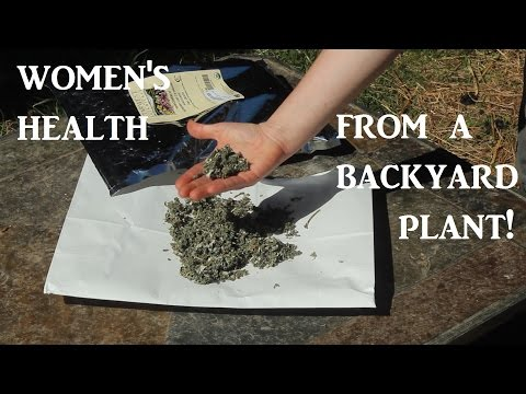 The Miracle Herb for Women's Health!