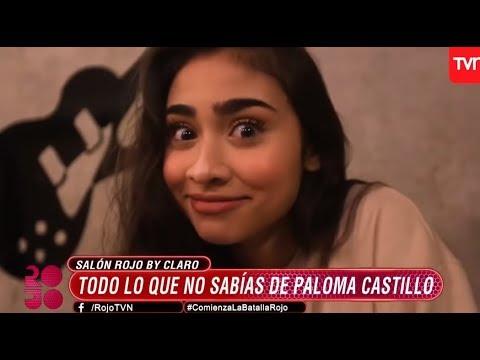 Conoce a Paloma Mami