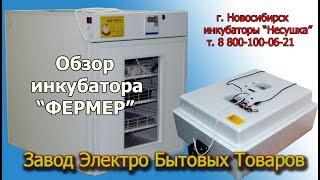 Инкубатор автоматический для яиц ФЕРМЕР. Обзор автоматического инкубатора для яиц