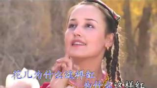中国塔吉克族歌曲【花儿为什么这样红】