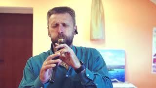 музыкант и коллекционер музыкальных инструментов -  Олег Переверзев_1