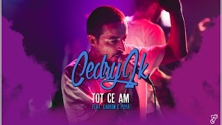 Cedry2k - Tot ce am ( feat. Cabron & Puya )