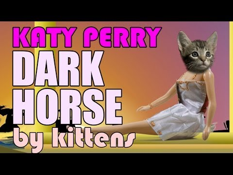 Katy Perry - Dark Horse (Cute Kitten Parody)