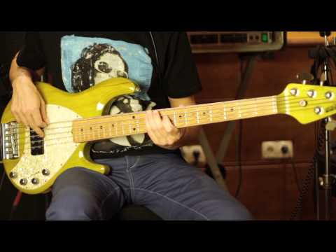 MUSICMAN STINGRAY vs FENDER PRECISION