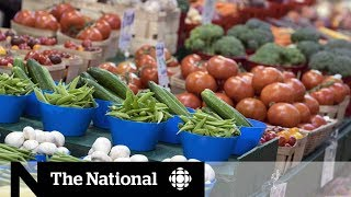 The politics behind Canada's revamped food guide