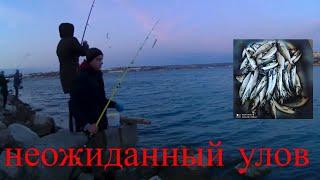 рыбалка на поплавок ловля окуня ставриды весенняя рыбалка 2020 ловля с берега в черном море