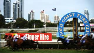 Gold Coast Stables - For Lease Or Sale