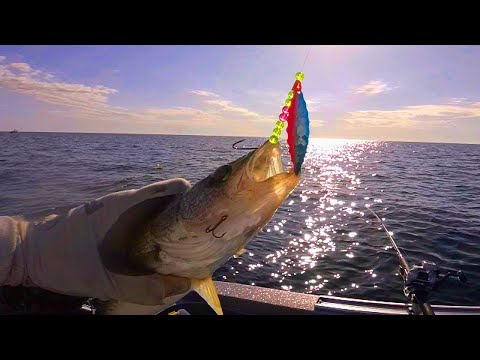 Easy Season On Saginaw Bay!!! ( Crawler Harness Walleye )