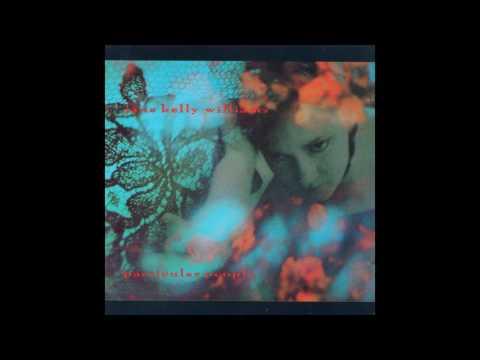 Jane Kelly Williams - Drive Away Darkness