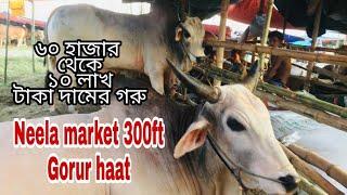 Gambar cover Neela market 300ft gorur haat