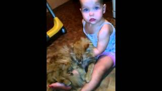 Дети и кошки.смеялась долго