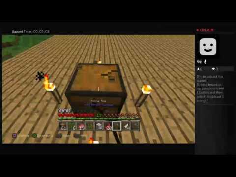 Minecraft #6