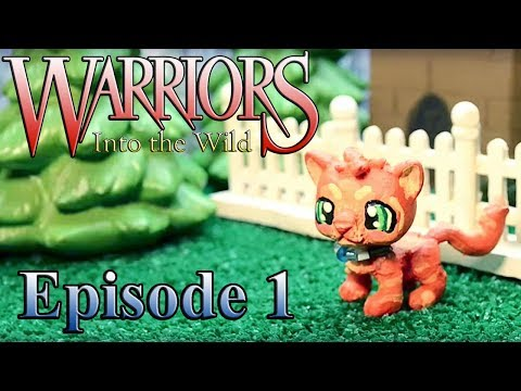Lps Wallpaper Cute Warrior Cats Into The Wild Episode 1 Youtube