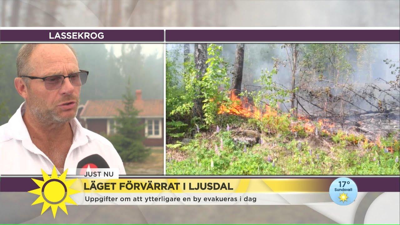 """Branden i Ljusdal sprider sig: """"Vi hoppas på att slippa evakuering"""" - Nyhetsmorgon (TV4)"""