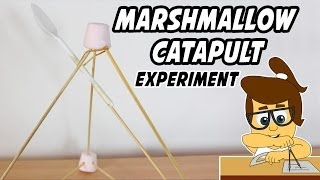 Marshmallow Catapult Experiment