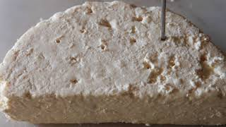 River Cottage Cheese and Dairy Handbook