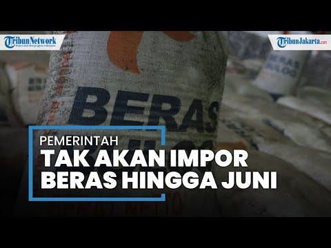 Perdebatan Soal Pemerintah Yang Akan Impor Beras, Jokowi: Setidaknya Hingga Juni 2021 Kita Tak Impor