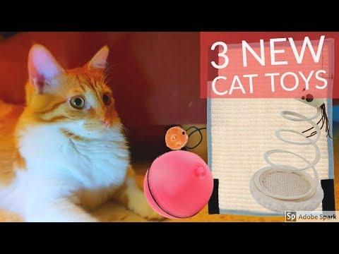 TESTING 3 NEW CAT TOYS