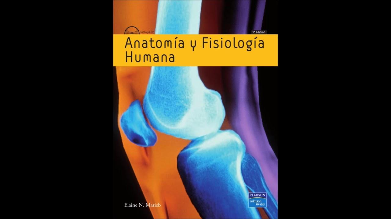 Excelente Anatomía Y Fisiología Humana Novena Edición Marieb ...