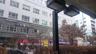 경기도 고양시 일산동구 장항2동 웨스턴853오피스텔 풍…