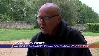 Yvelines | À la découverte des plantes comestibles de la Vallée de Chevreuse