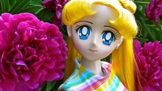 Sailor Moon セーラームーン  Obitsu Parabox BJD 1/3 Dolls Outside