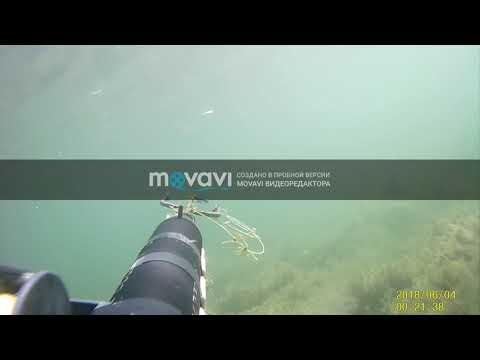 подводная охота 28 01 2019 г майские карьеры Кабардино-Балкария