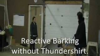 """Thundershirt """"before & After"""" Videos"""