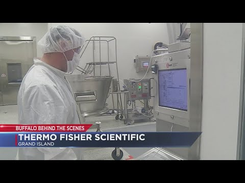 Buffalo Behind The Scenes: Thermo Fisher Scientific