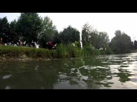 baulab-video-lezione1-corso-attività-cinofile-in-acqua