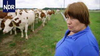 Globalisierung in der Landwirtschaft: Bauern am Scheideweg | die nordstory | NDR