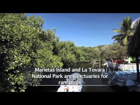 Travel Video Discover All About Riviera Nayarit Tourism PromovisionPV.com Video Photo