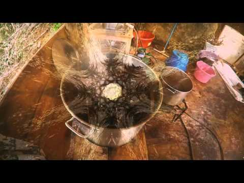 How to make Ayahuasca in 3 minutes