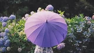 SILVA - water,flower