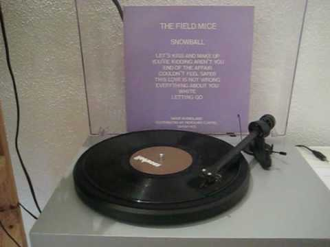 The Field Mice - Everything about you mp3
