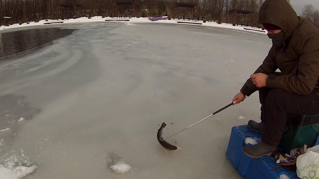 Платные рыбалки на севере москвы