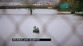 Help Hurricane Harvey Victims