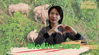 Oficialulo de UN vokas lerni seprtojn de Ĉinio en protekto de biodiverseco