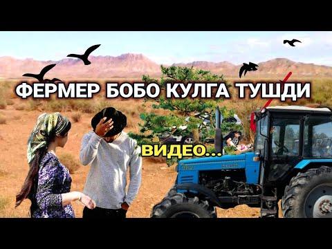 ФЕРМЕР ДАЛА ШИЙПОНИДАГИ КЕЛИН ВОКЕАСИ ВИДЕО...